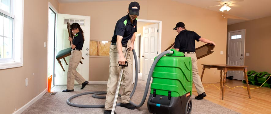 Shelton, WA cleaning services